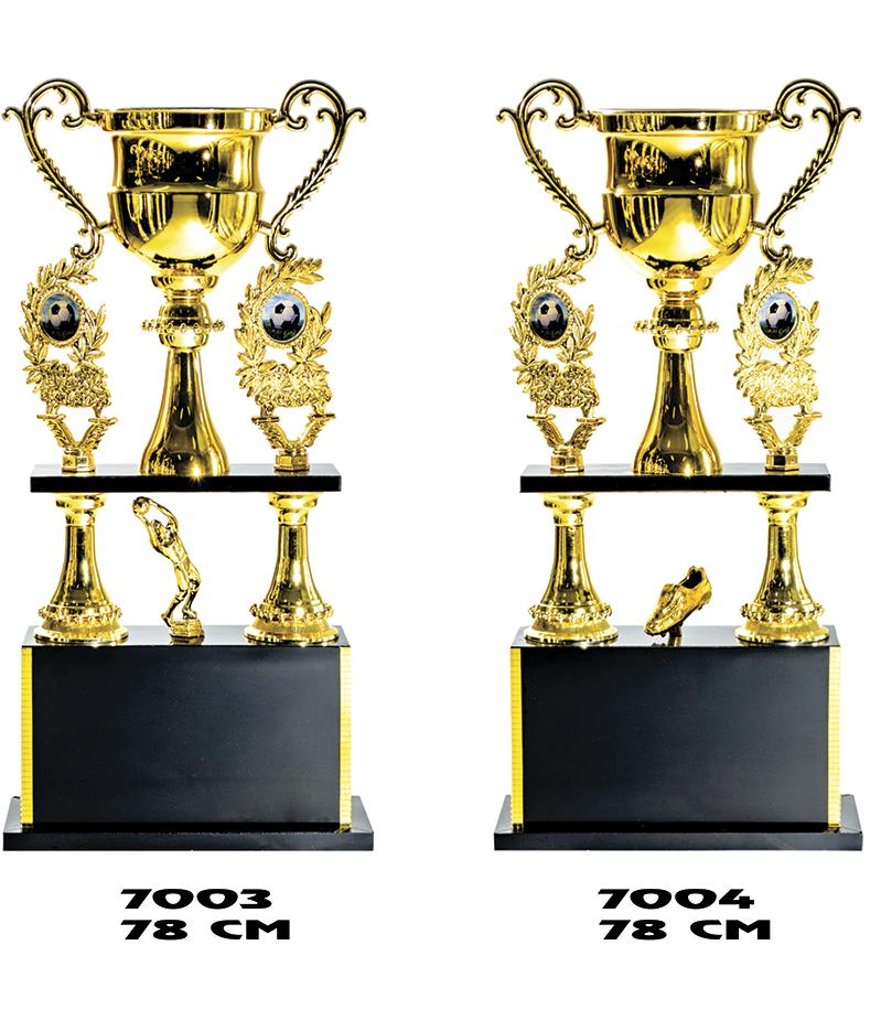 7003-a-7004